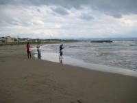環境体験(稲佐の浜)