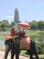 タイのアユタヤ遺産を訪れた際の一枚。