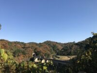 三隅の「秋」